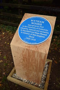 Large blue plaque displayed on a thick square wooden block, surrounded by foliage